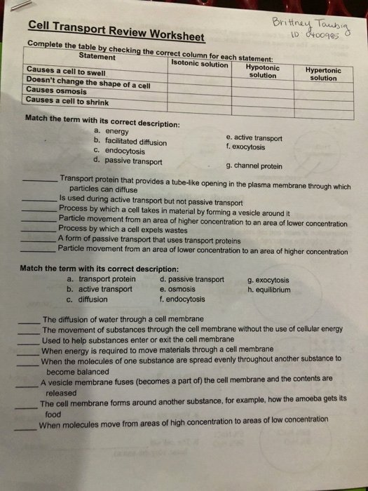 Cell Transport Worksheet Biology Answers Ideas solved Britney tos 985 Cell Transport Review Worksheet Co