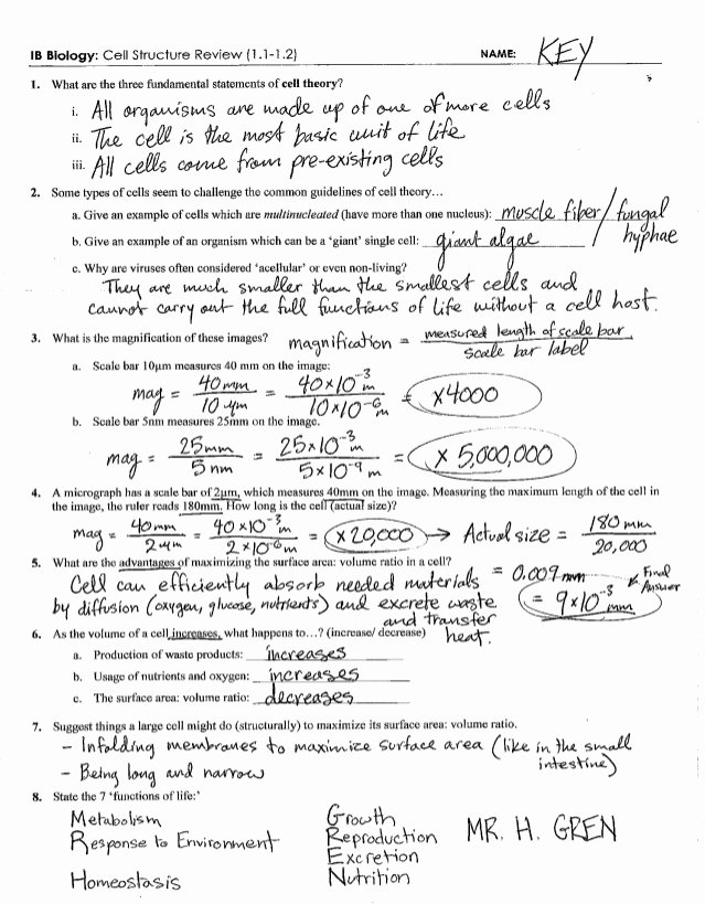 Cell Transport Worksheet Biology Answers Printable Ib Cell Structure Review Key 1 1 1 2