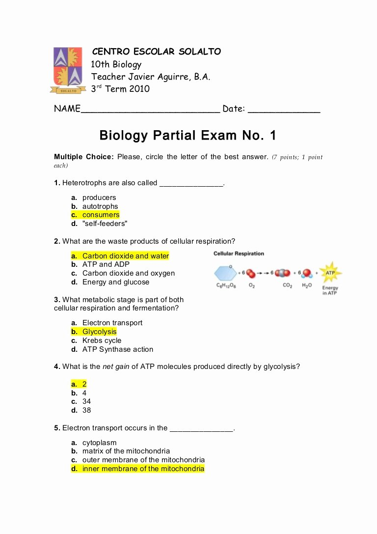 Cellular Respiration Worksheet Answer Key New Answer Key Quiz No 1 3rd Mp 2010