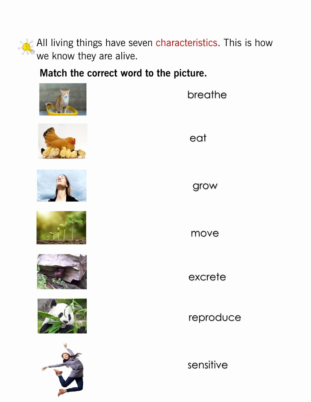 Characteristics Of Living Things Worksheet New Characteristics Of Living Things Interactive Worksheet