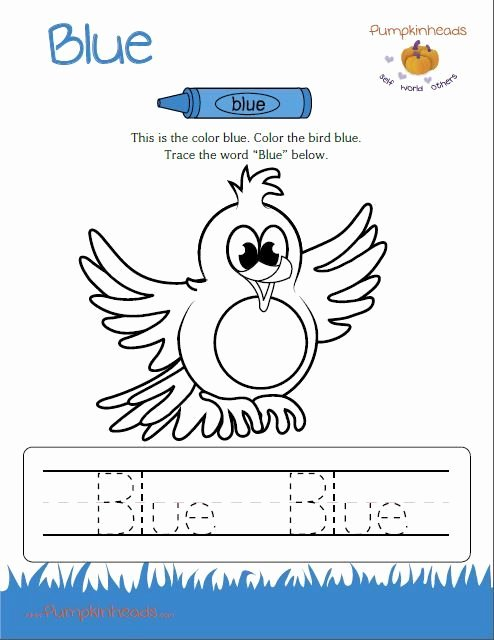 Color Blue Worksheets for Preschool Ideas Page Not Found