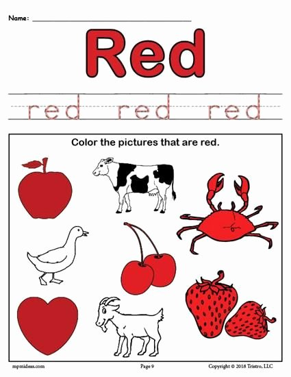 Color Red Worksheets for toddlers Best Of Color Red Worksheet