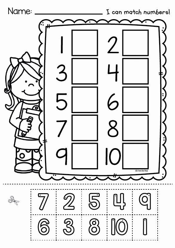 Cut and Paste Math Worksheets Free Free Cut and Paste Worksheets Glue Kindergarten 800x444 the