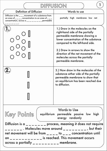 Diffusion and Osmosis Worksheet Answers Best Of Diffusion and Osmosis Worksheet Elegant Diffusion Worksheet