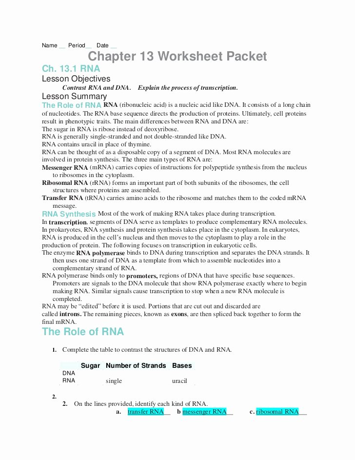 Dna and Rna Worksheet Answers Printable Chapter13 Worksheets