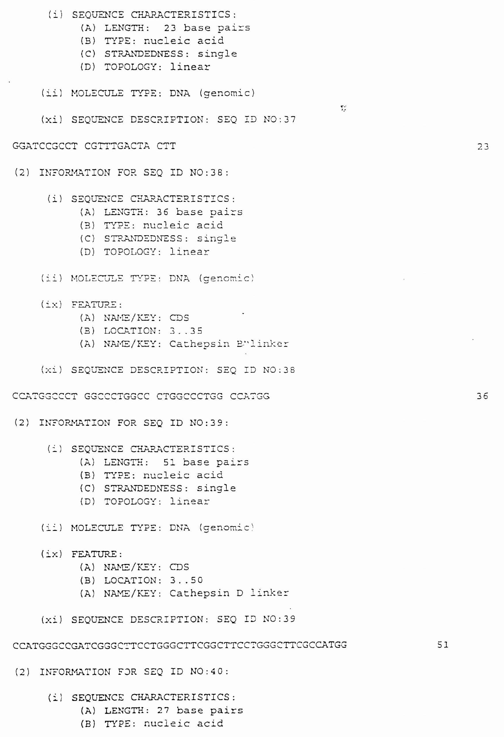 Dna Base Pairing Worksheet Answers Printable Classified Dna Base Pairing Worksheet Answers Dnabasepairs