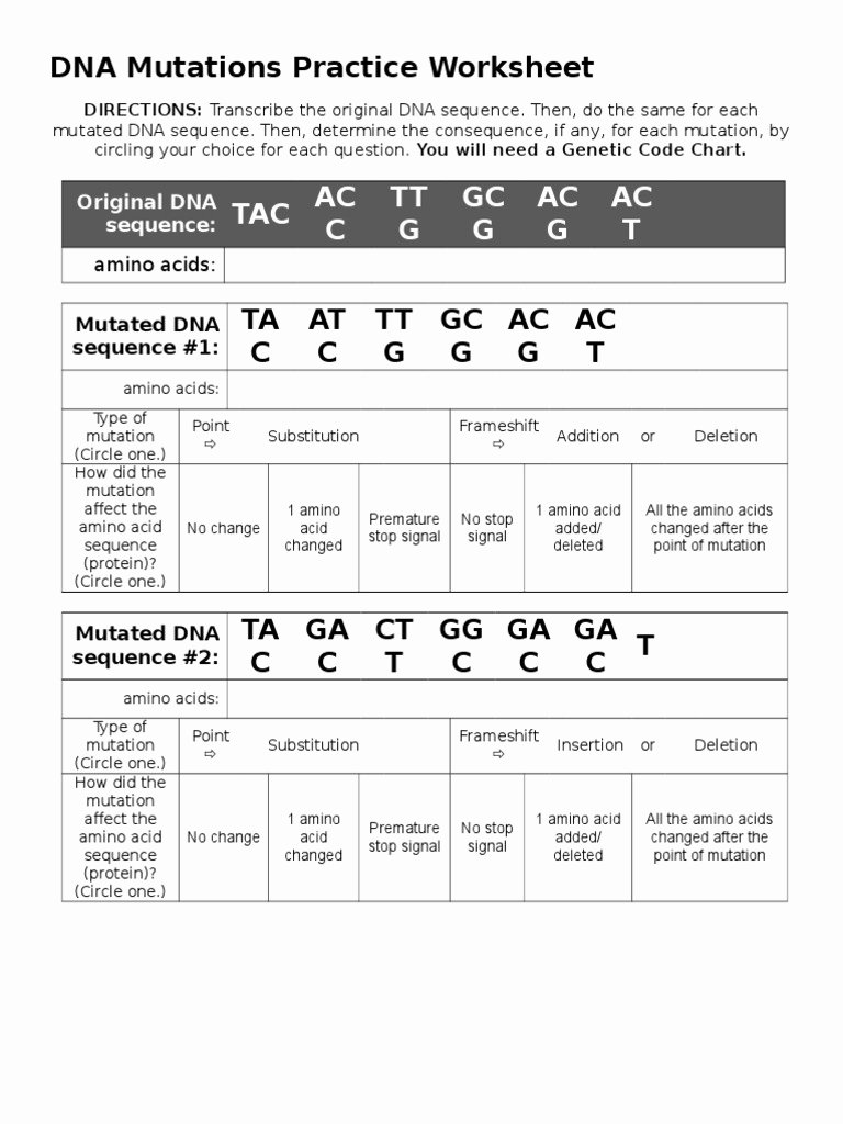 Dna Mutation Practice Worksheet Answers Best Of Dna Mutations Practice Worksheet Point Mutation