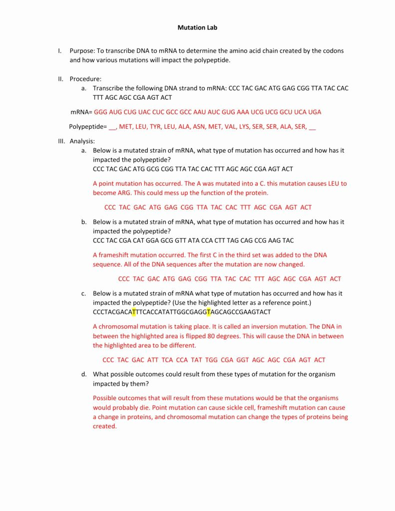 Dna Mutation Practice Worksheet Answers New Dna Mutation Practice Worksheet Answers Worksheet List