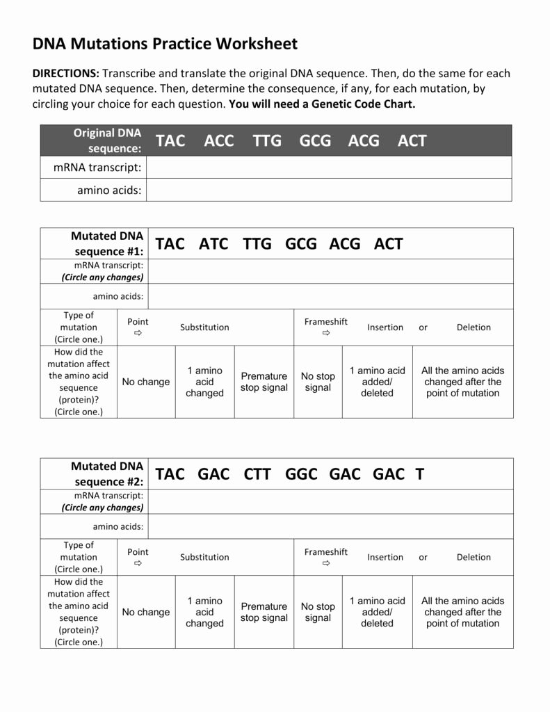 Dna Mutations Practice Worksheet Answer top Dna Practice Worksheet A Dna Practice Worksheet is A