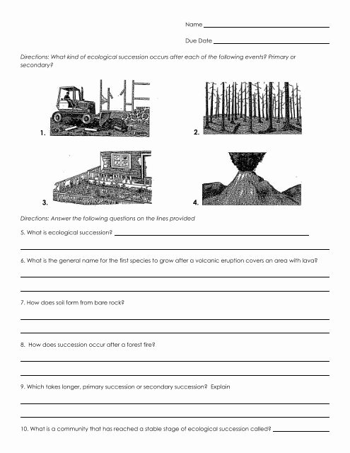 name due date directions what kind of ecological succession