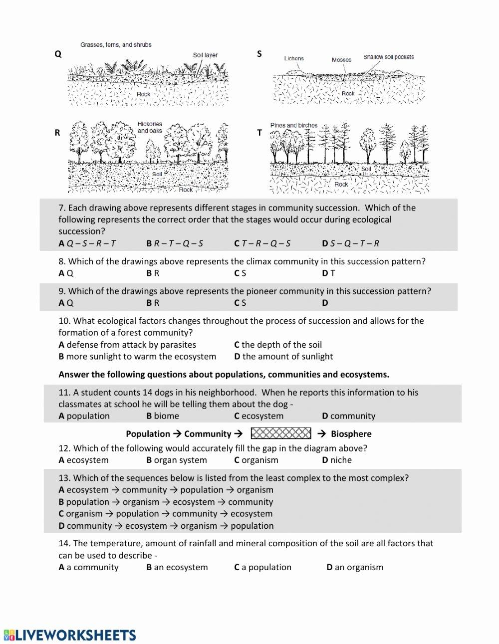 Ecological Succession Worksheet High School Inspirational Es Ecological Succession Hw Interactive Worksheet