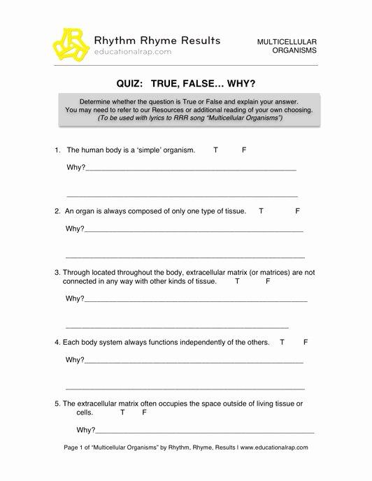 Energy Transformation Worksheet Answer Key Kids Energy Transformation Worksheet Answers Worksheet List