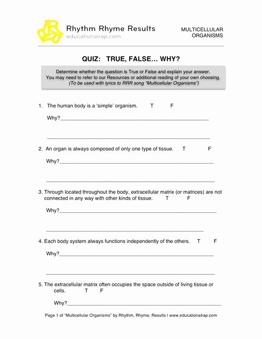 Energy Transformation Worksheets Middle School Best Of 50 Energy Transformation Worksheet Middle School In 2020