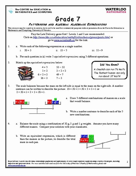 Equivalent Expressions Worksheet 7th Grade Kids Grade 7 Patterning and Algebra Algebraic Expressions