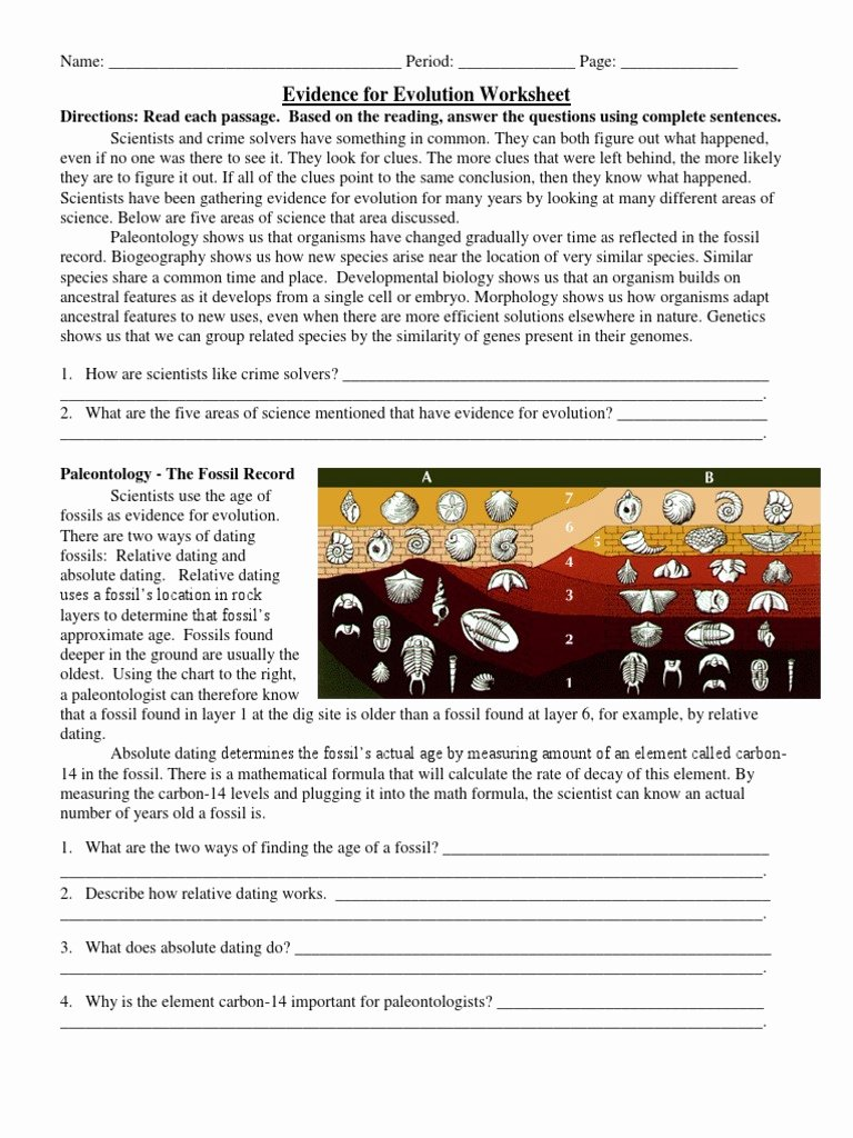 Evidence Of Evolution Worksheet Answers Kids Evidence for Evolution Worksheet Evolution