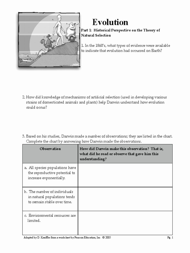 Evolution and Natural Selection Worksheet Fresh Worksheet Evolution Packet Natural Selection