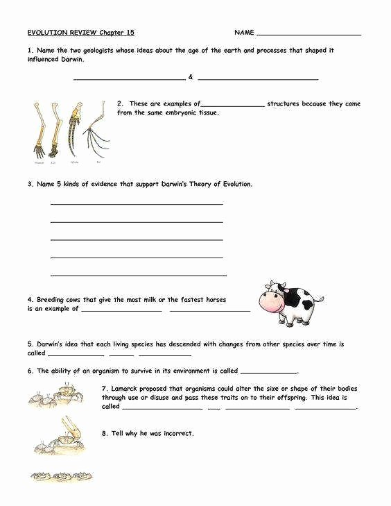 Evolution and Natural Selection Worksheet New Evidence Evolution Worksheet Inspirational What is