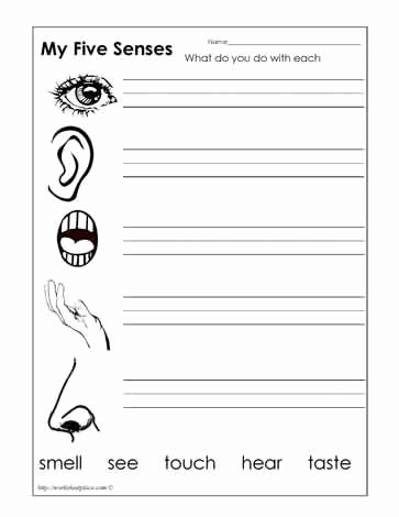 Five Senses Worksheets for Kindergarten Kids Five Senses Worksheets
