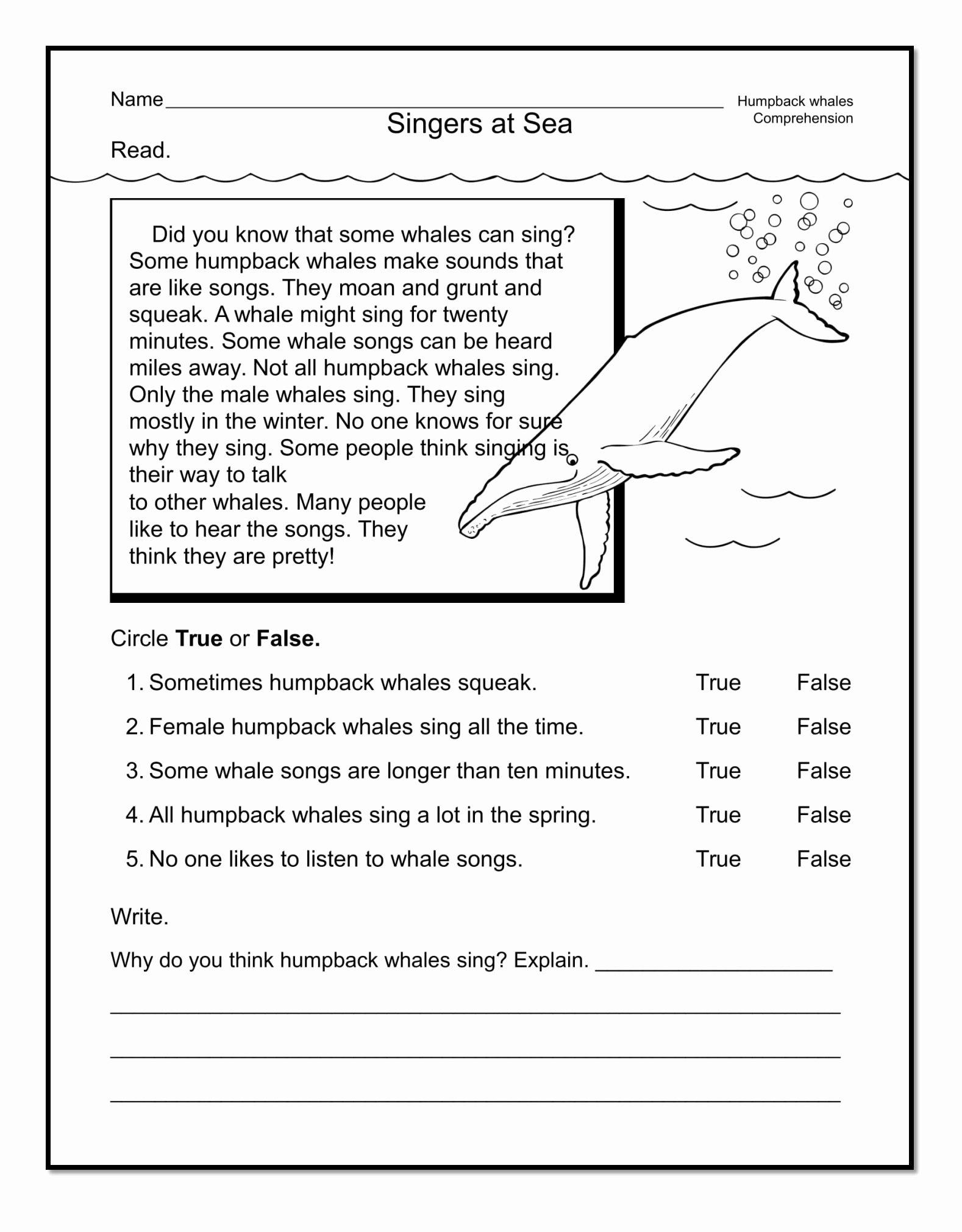 Free 1st Grade Comprehension Worksheets New Good Examples 1st Grade Worksheets Free Download