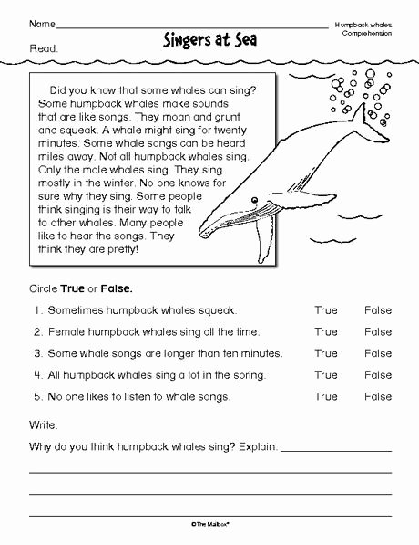 Free 2nd Grade Comprehension Worksheets New Reading Prehension Worksheet Nonfiction Whales