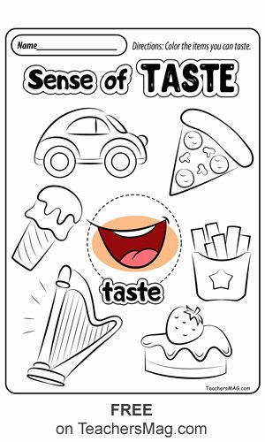 Free Printable Five Senses Worksheets Best Of Free Five Senses Worksheets Teachersmag