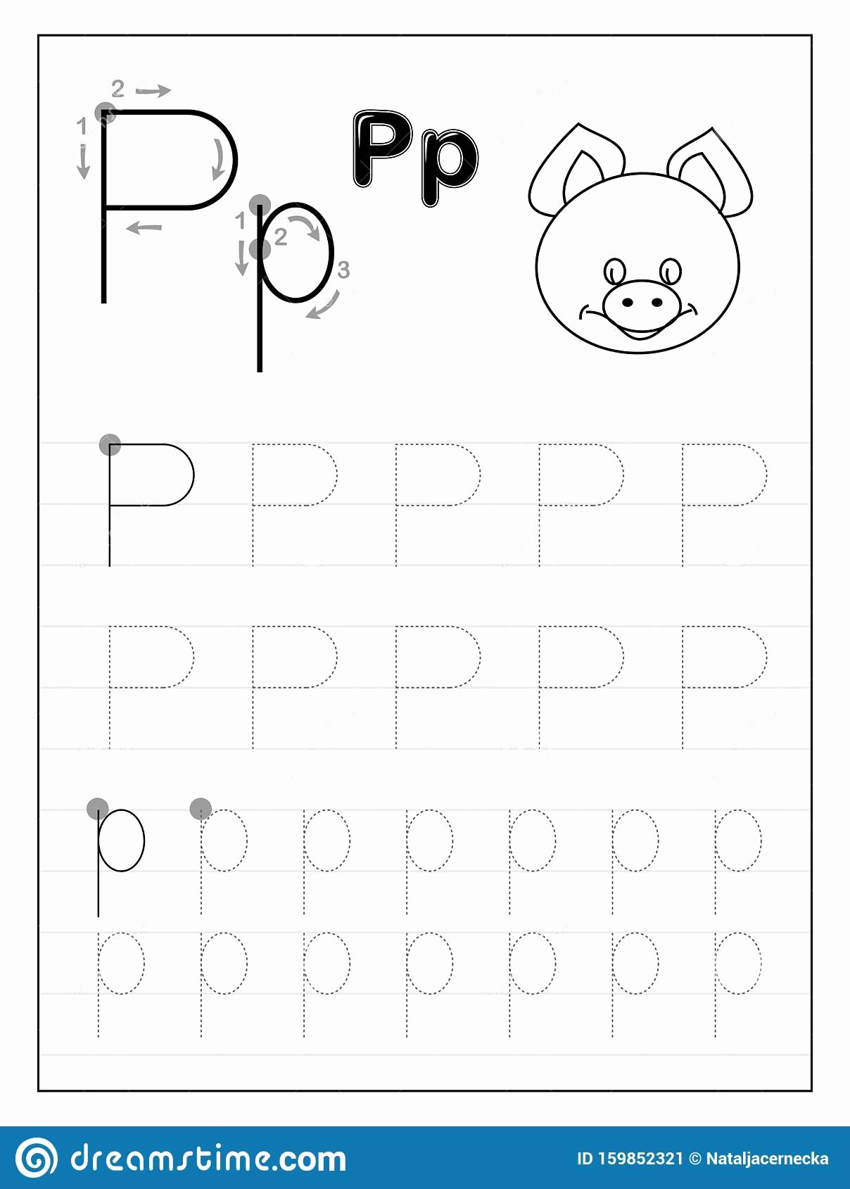 Free Printable Letter P Worksheets top Tracing Alphabet Letter P Black and White Educational Pages
