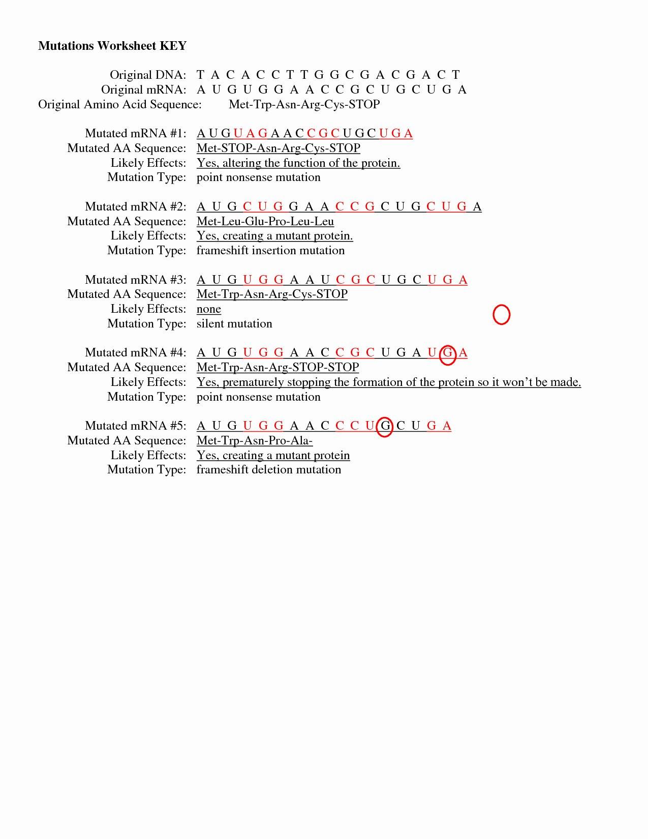 Gene and Chromosome Mutation Worksheet Free Dna Gene Chromosome Worksheet