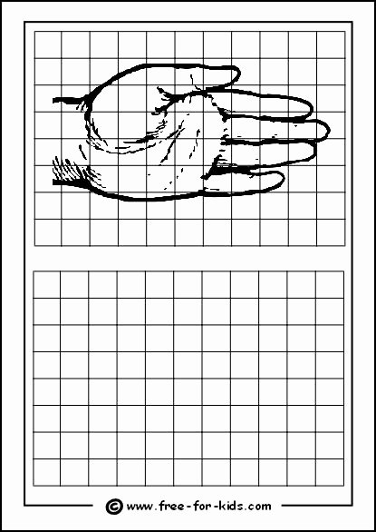 Grid Drawing Worksheets Middle School Best Of Drawing Grids with for Drawing Practice