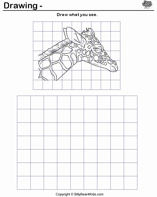 Grid Drawing Worksheets Middle School Free 8th Grade Extra Credit