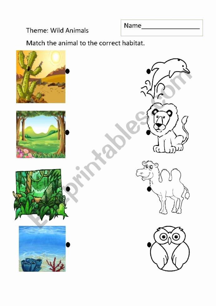 Habitat Worksheets for 1st Grade Free Animal Habitats Esl Worksheet by Johnnym Worksheets Times