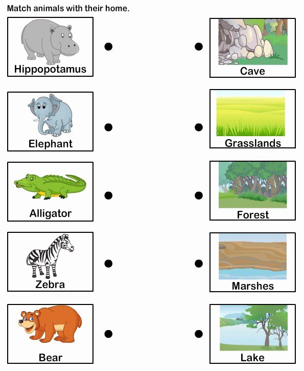 Habitat Worksheets for 1st Grade Fresh Animal Habitats for Kids Worksheets