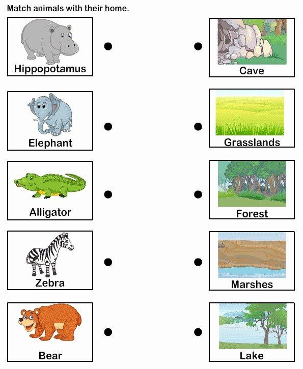 Habitat Worksheets for 1st Grade Fresh Animal Habitats for Kids Worksheets