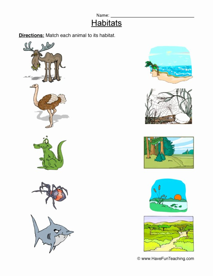 Habitat Worksheets for 1st Grade Lovely Matching Animal Habitats Worksheet Have Fun Teaching