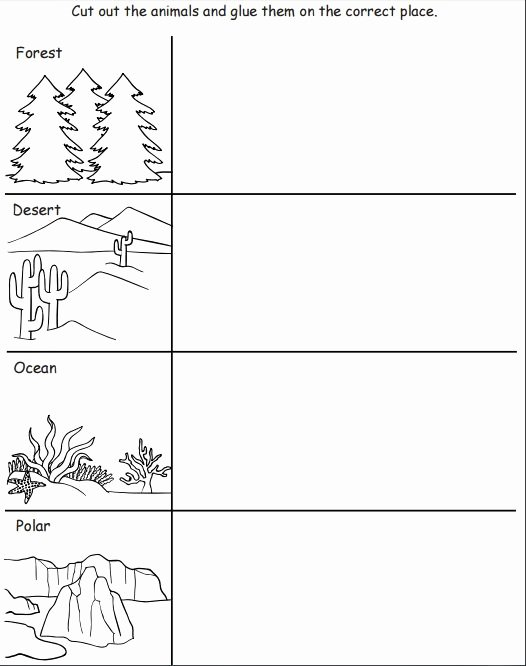 Habitat Worksheets for 1st Grade New Pin On Lp