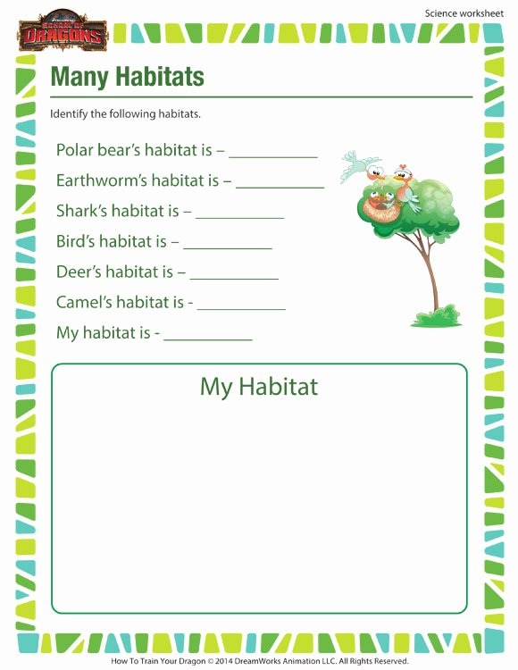 Habitat Worksheets for 1st Grade Printable Many Habitats Activity 1st Grade Science Worksheet sod