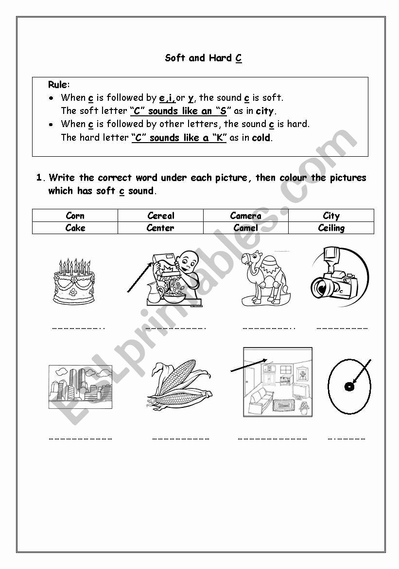 Hard and soft C Worksheets Best Of soft and Hard C Esl Worksheet by Sashahakouz