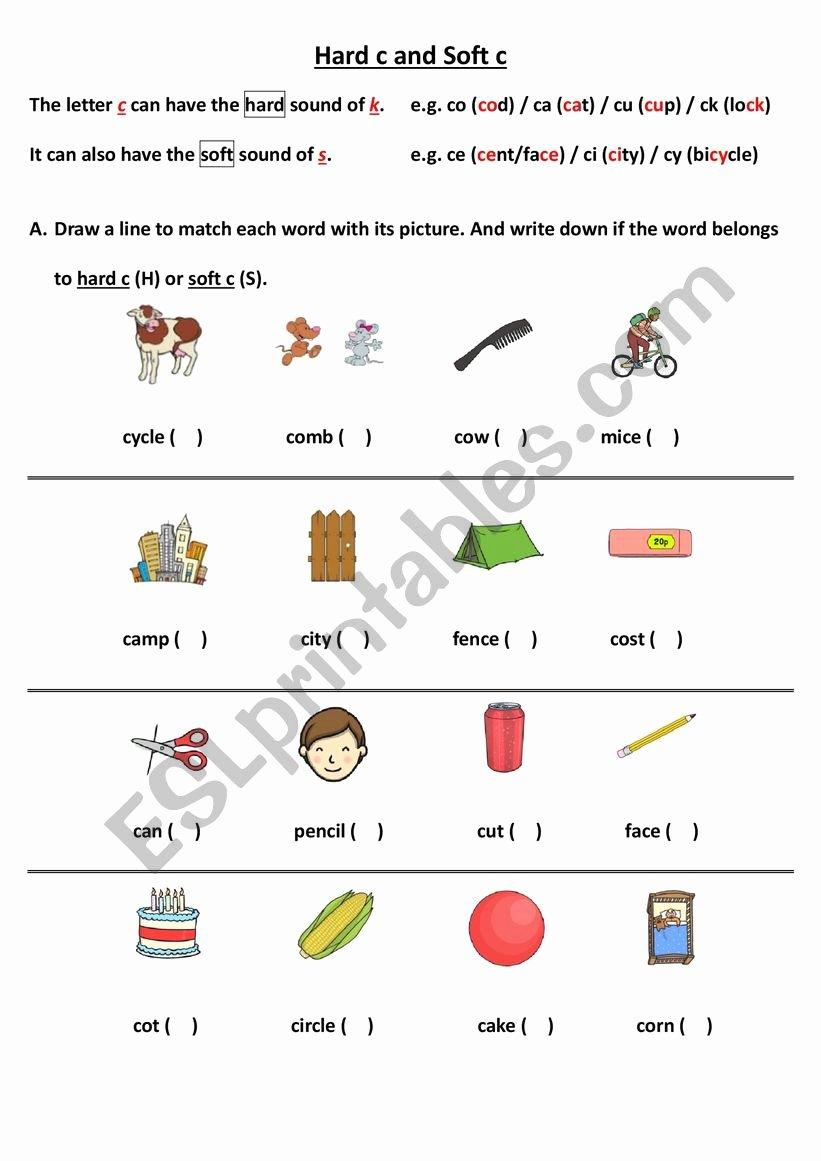 Hard and soft C Worksheets Kids Hard C and soft C Esl Worksheet by Nicole86