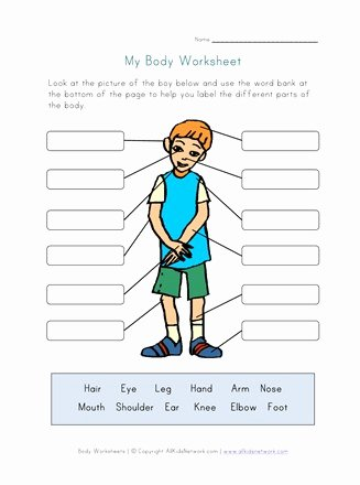 Human Body for Kids Worksheets Best Of Body Parts Worksheet for Kids