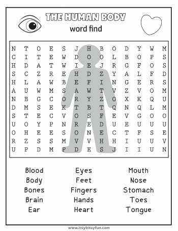 Human Body for Kids Worksheets Printable Human Body Worksheets Itsybitsyfun
