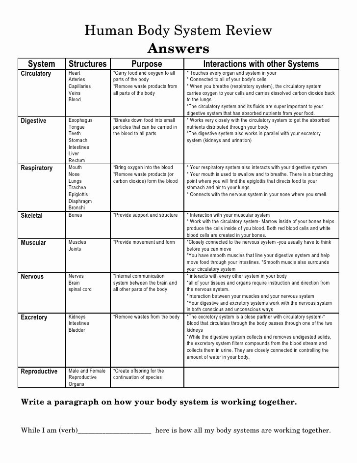 Human Body Systems Matching Worksheet New Pin Biology Body Systems Worksheets Answers 4th Grade
