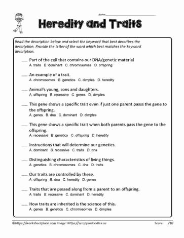 Inherited Traits Worksheet 3rd Grade New Heredity Traits Multiple Choice Worksheets