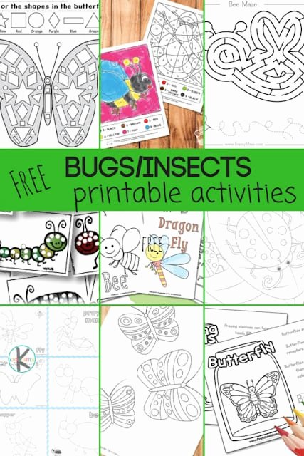 Insect Worksheets for First Grade Free 28 Free Insect Worksheets