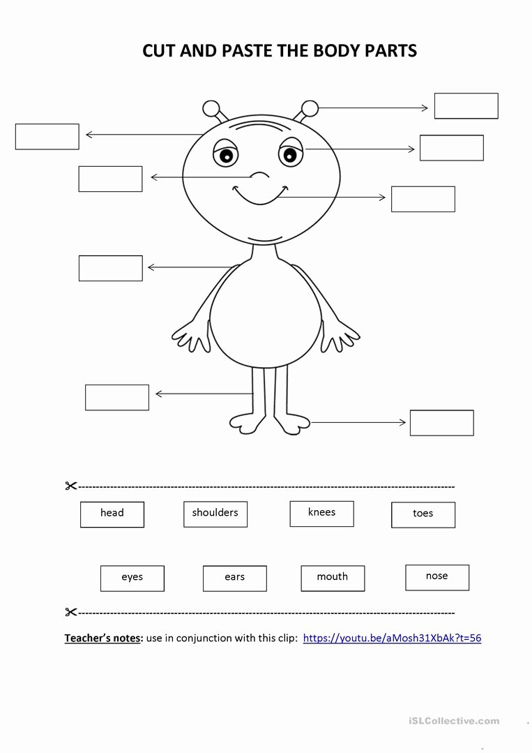 Kindergarten Cut and Paste Worksheets Best Of Cut & Paste Activity Body Parts English Esl Worksheets