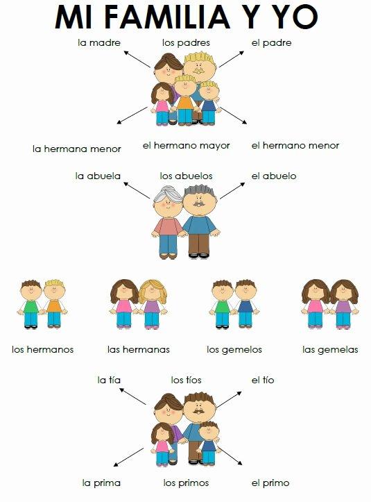 La Familia Worksheet In Spanish Best Of La Familia Hoja De Práctica