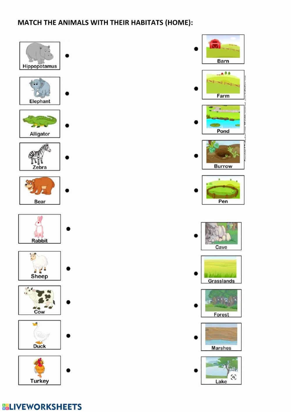Line Plot Worksheets 5th Grade Best Of Animal Habitats and Home Interactive Worksheet Worksheets