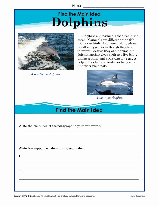 Main Idea Worksheet 5th Grade Best Of 5th Grade Main Idea Worksheet About Dolphins