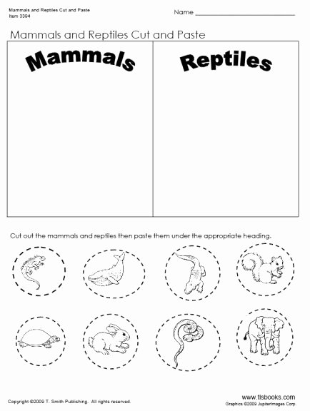 Mammals Worksheets for 2nd Grade New Mammals and Reptiles Cut and Paste Worksheet