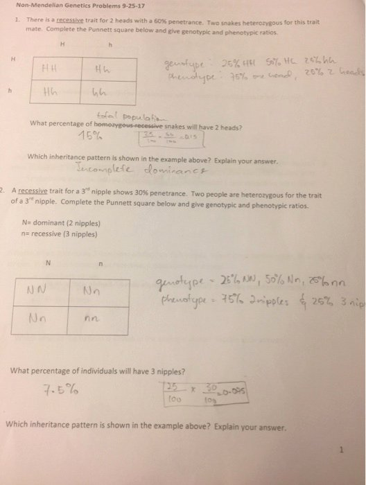 Mendelian Genetics Worksheet Answer Key Fresh solved Non Mendelian Genetics Problems 9 25 17 there is A