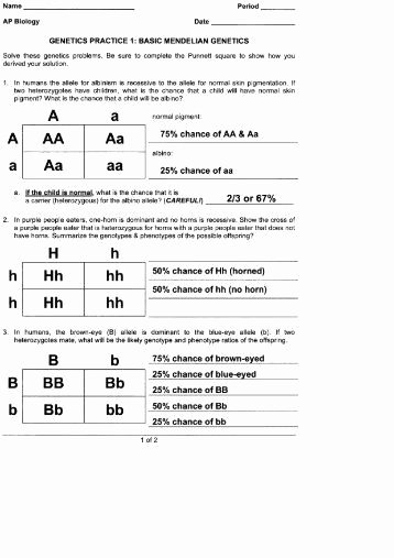 Mendelian Genetics Worksheet Answer Key Ideas Mendelian Genetics Worksheet Answer Key Beautiful Genetics