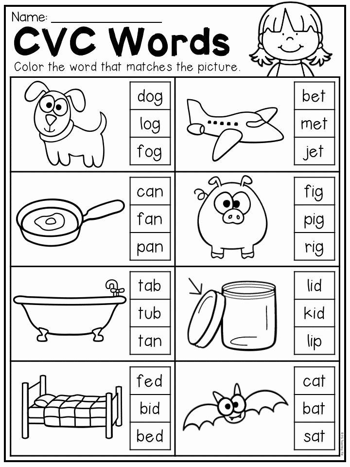 Middle sounds Worksheets for Kindergarten Kids 20 Cvc Worksheets for Kindergarten